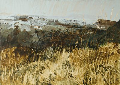The Pale Grass, Gasping Faintly in the Sun, (from Blackford Hill)