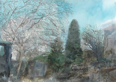 The Leafless Trees, Oxgangs Garden